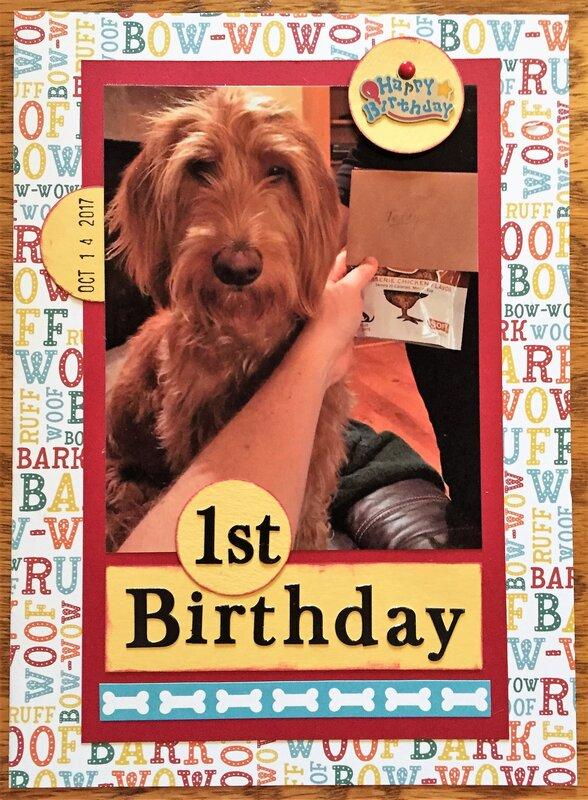 Teddy's First Birthday