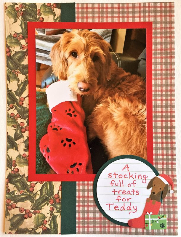 Christmas Stocking for Teddy