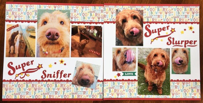 Super Sniffer and Slurper