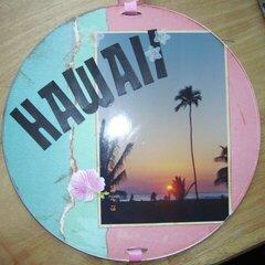 Hawaii Chip & Frame