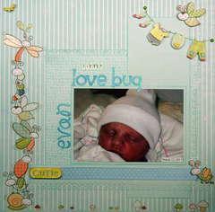 Little Love Bug (Evan)