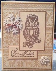 2014 Monochromatic Owl Card