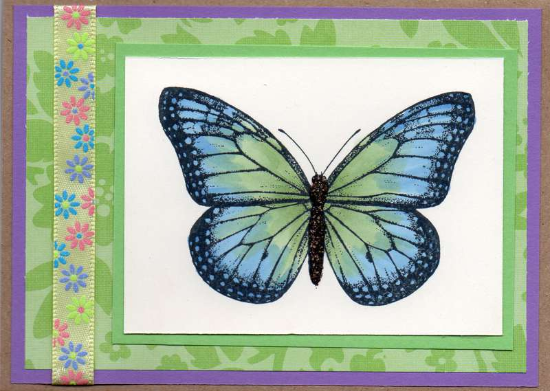 Butterfly Card 3