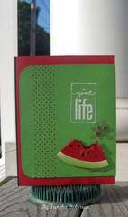 A Good Life- National Watermelon Day Aug3
