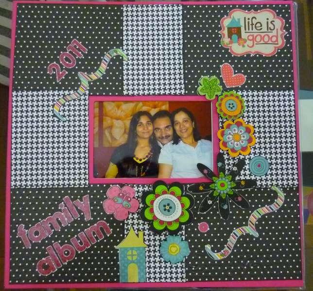 2011 Family Album