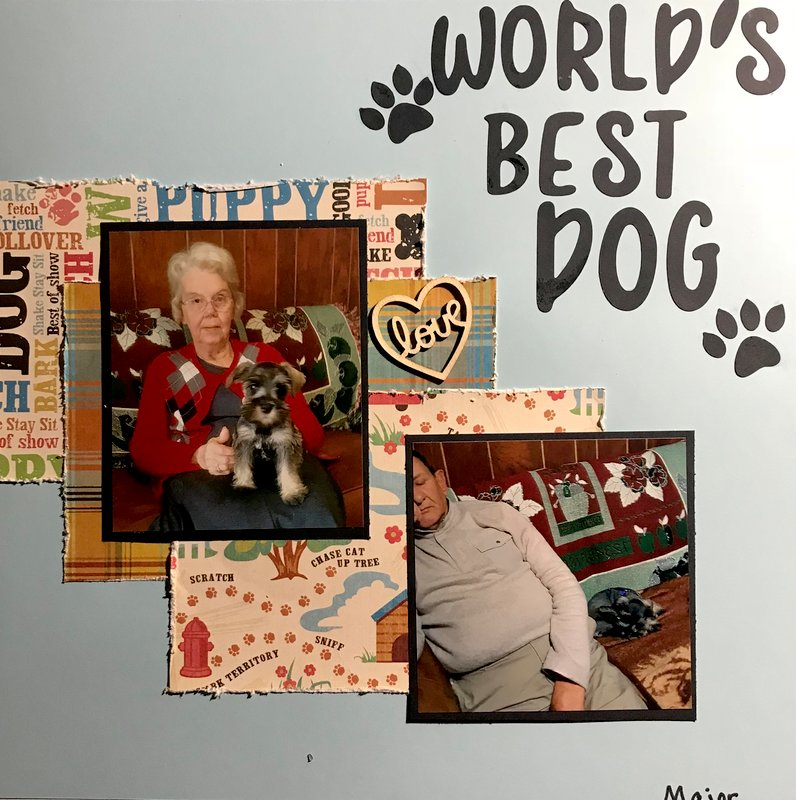 World's Best Dog