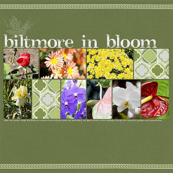Biltmore in Bloom (l)
