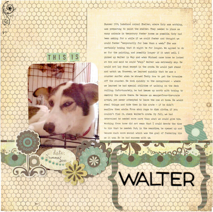 Walter the foster