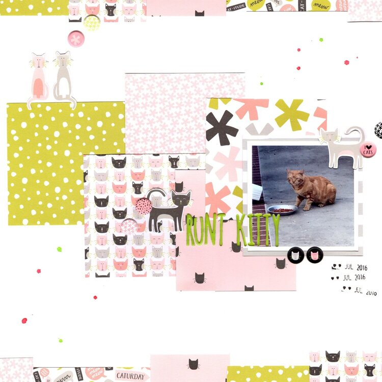 runt kitty (paper issues) || happyGRL