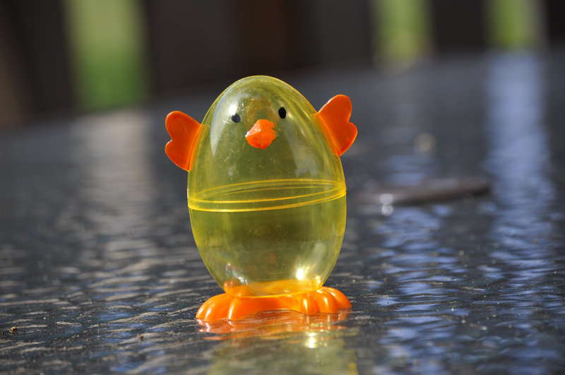 10. Chick (10 pts)