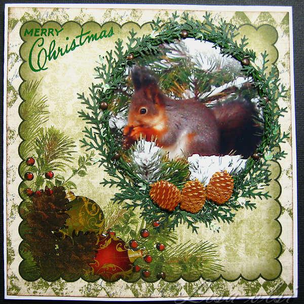 A cute squirrel, Christmas card week 11