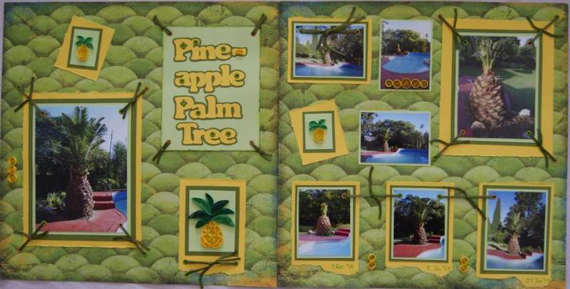 Pine Apple Palm Tree