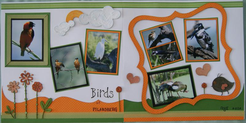 Birds of Pilanesberg     ~~~   IScrap   ~~~