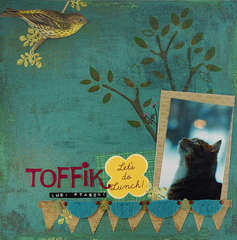 Toffee likes birds