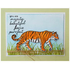 You are Majestic.... Card