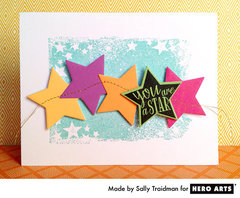 You Are a Star By Sally Traidman