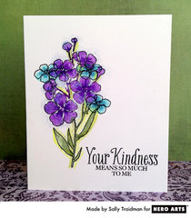 One Layer Kindness  By Sally Traidman