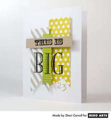 This is Big by Shari Carroll