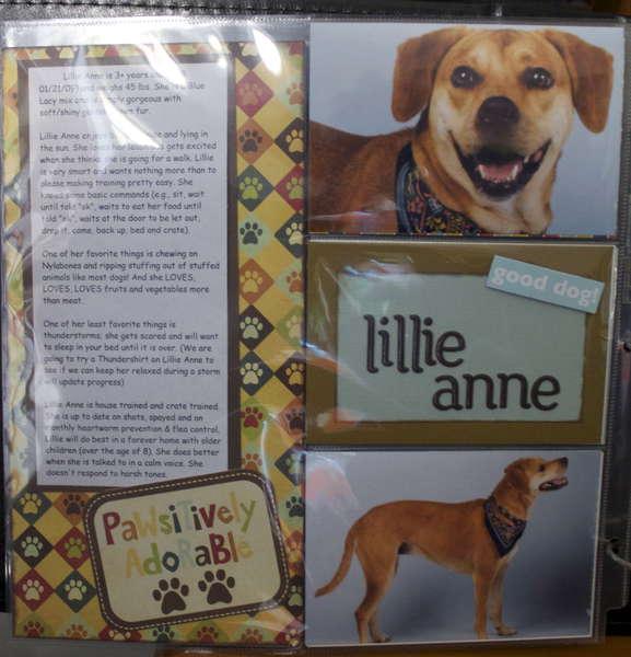 DITR Adoptables - Lillie Anne