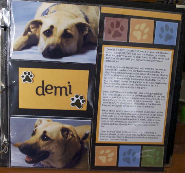 DITR Adoptables -- Demi
