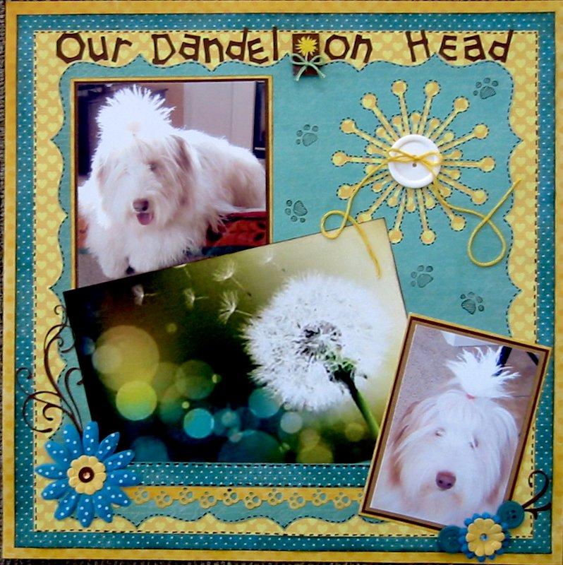 Our Dandelion Head