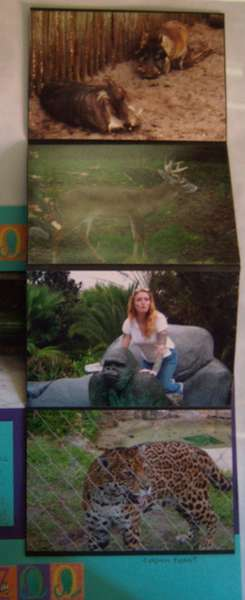 Jacksonville Zoo Pullout 2