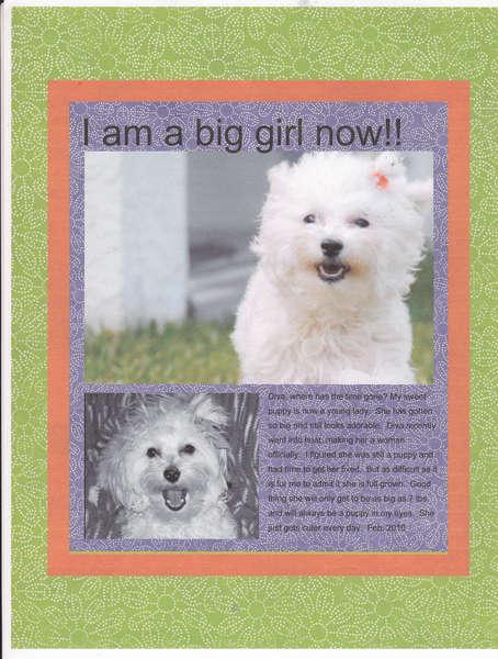 I am a Big Girl