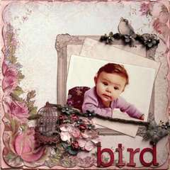 Bird ***Swirlydoos***