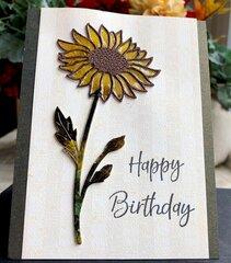 Happy Birthday #4