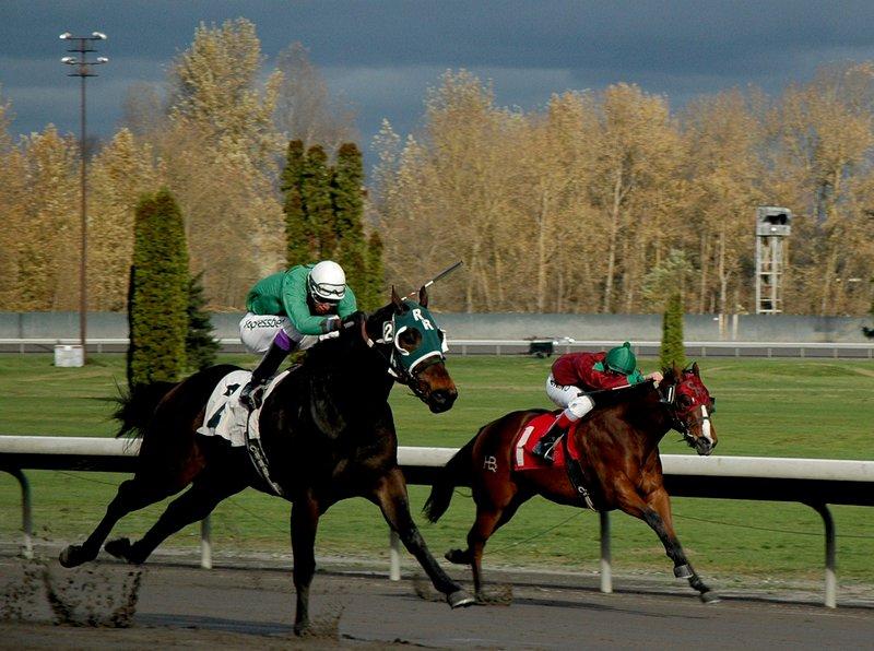 Races2013