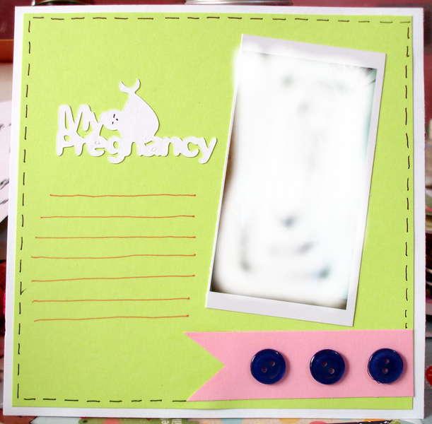 Pregnancy album