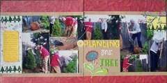 Planting Mr. Tree