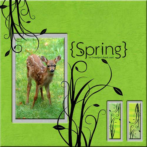 Spring in Grandpa's Back Yard
