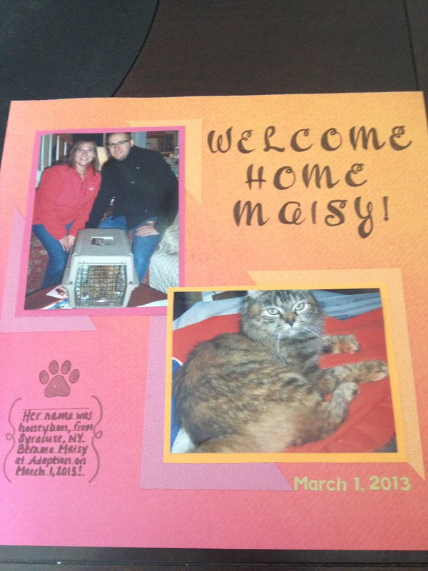 Welcome Home Maisy!