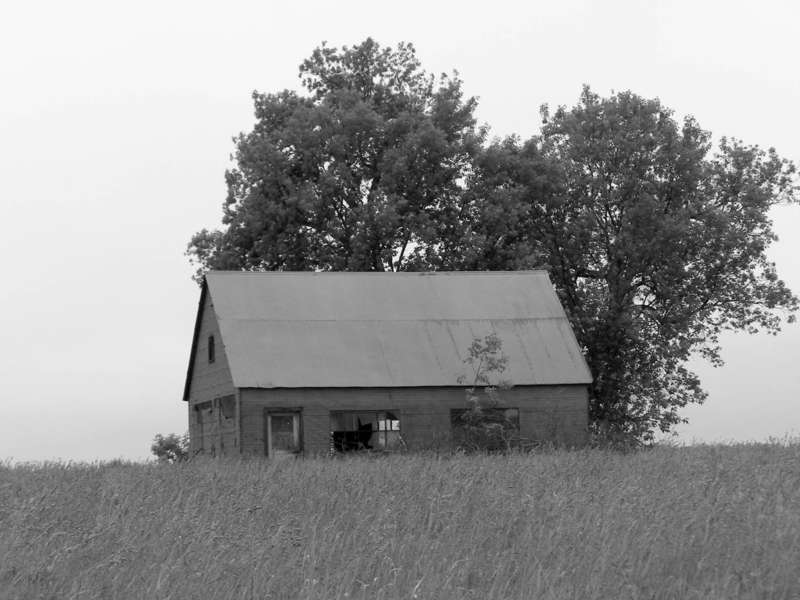 6/9 POD Dilapidated dwelling