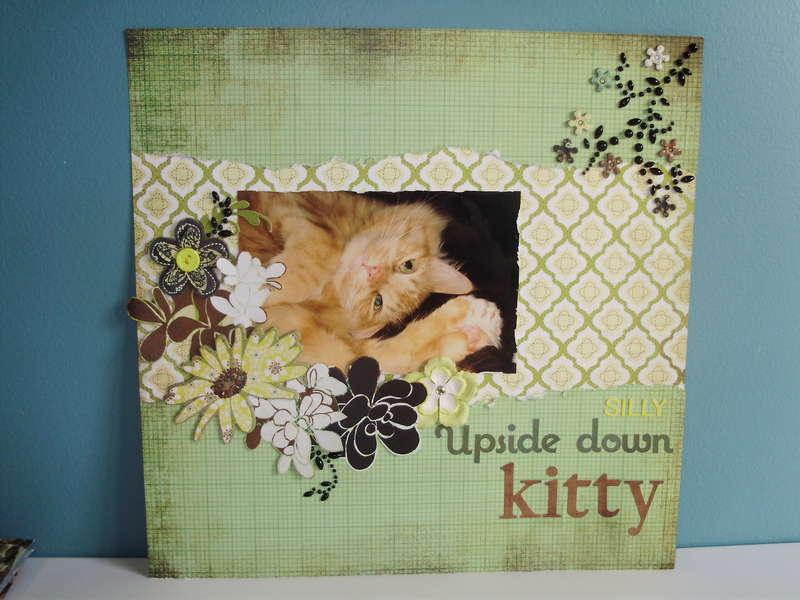 Upside Down Kitty