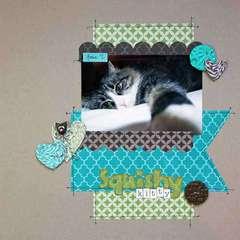 Squishy Kitty