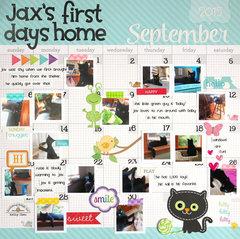 *** Doodlebug Design *** Jax's First Days Home