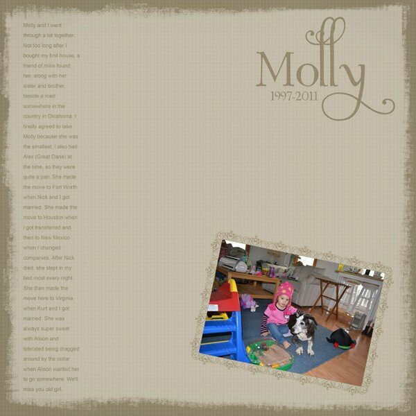 Molly 1997-2011 - Carina Gardner CT Feb 2011