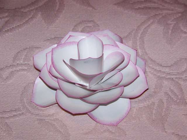 3-D Rose