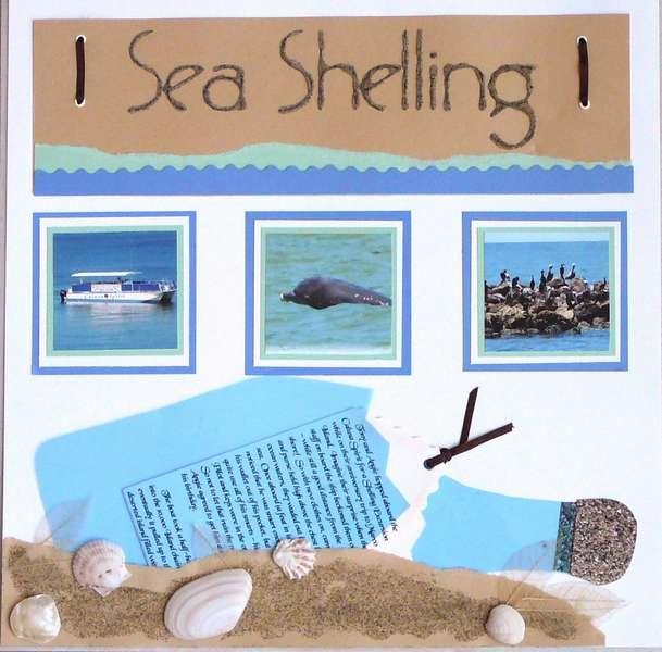 Sea Shelling