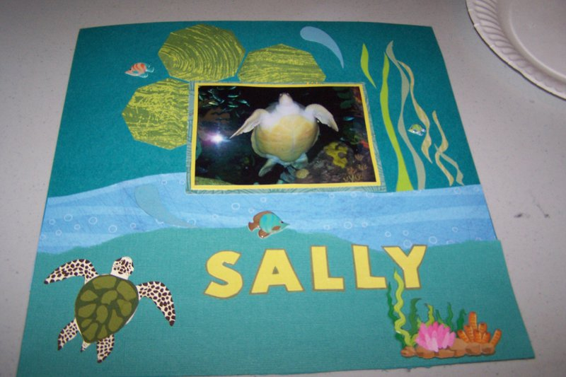 Sally the giant turtle