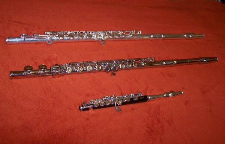 2. Flutes {10pts.}