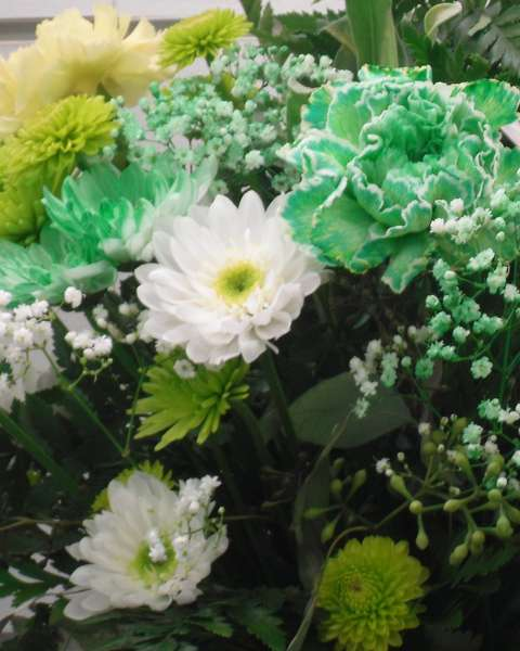 15. Flower Dyed Green for St. Patrick's Day {6 pts}