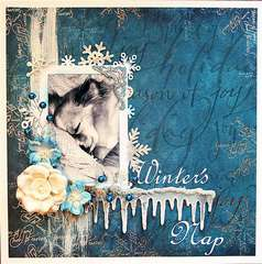 Winter's Nap