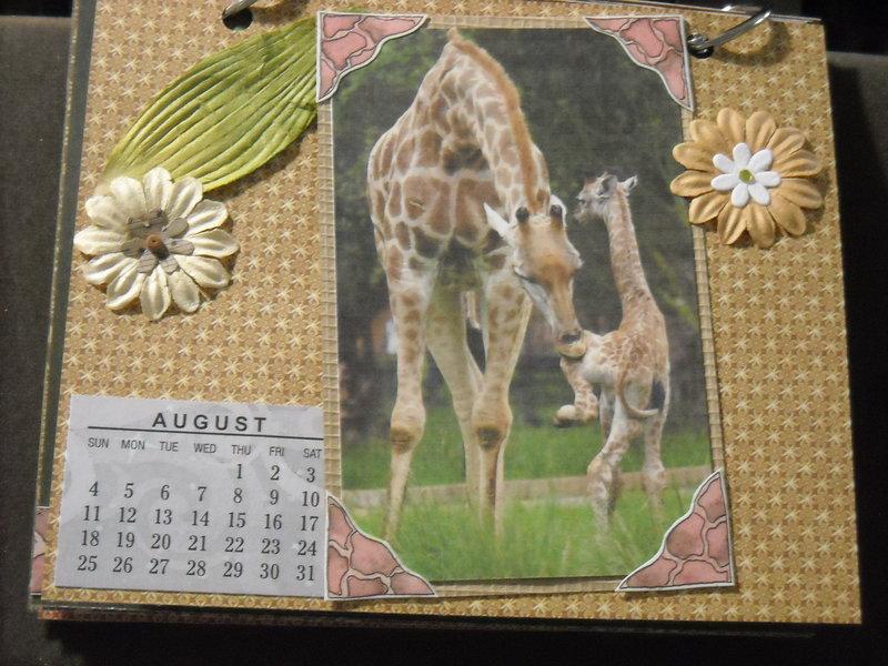 2019 Giraffe Calendar (August)