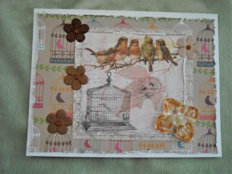 Birds & Birdcage