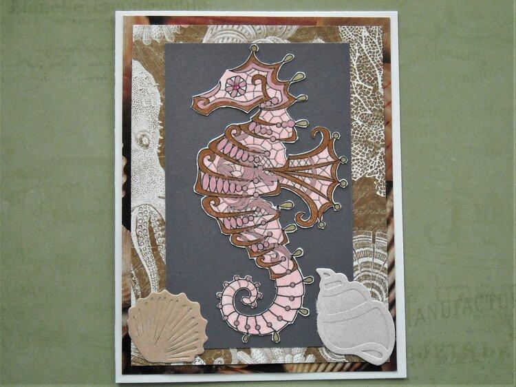 Pink & brown Seahorse