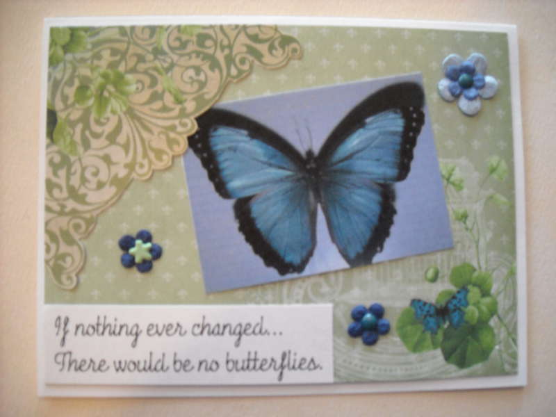 If nothing ever changed... There would be no butterflies