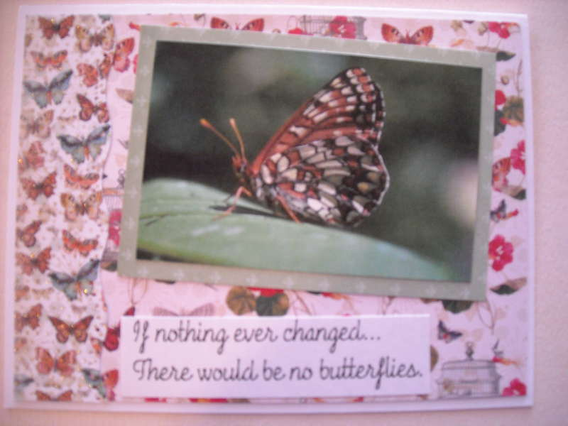 If nothing ever changed there would be no butterflies